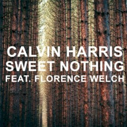 Calvin Harris - Sweet Nothing (feat. Florence Welch)