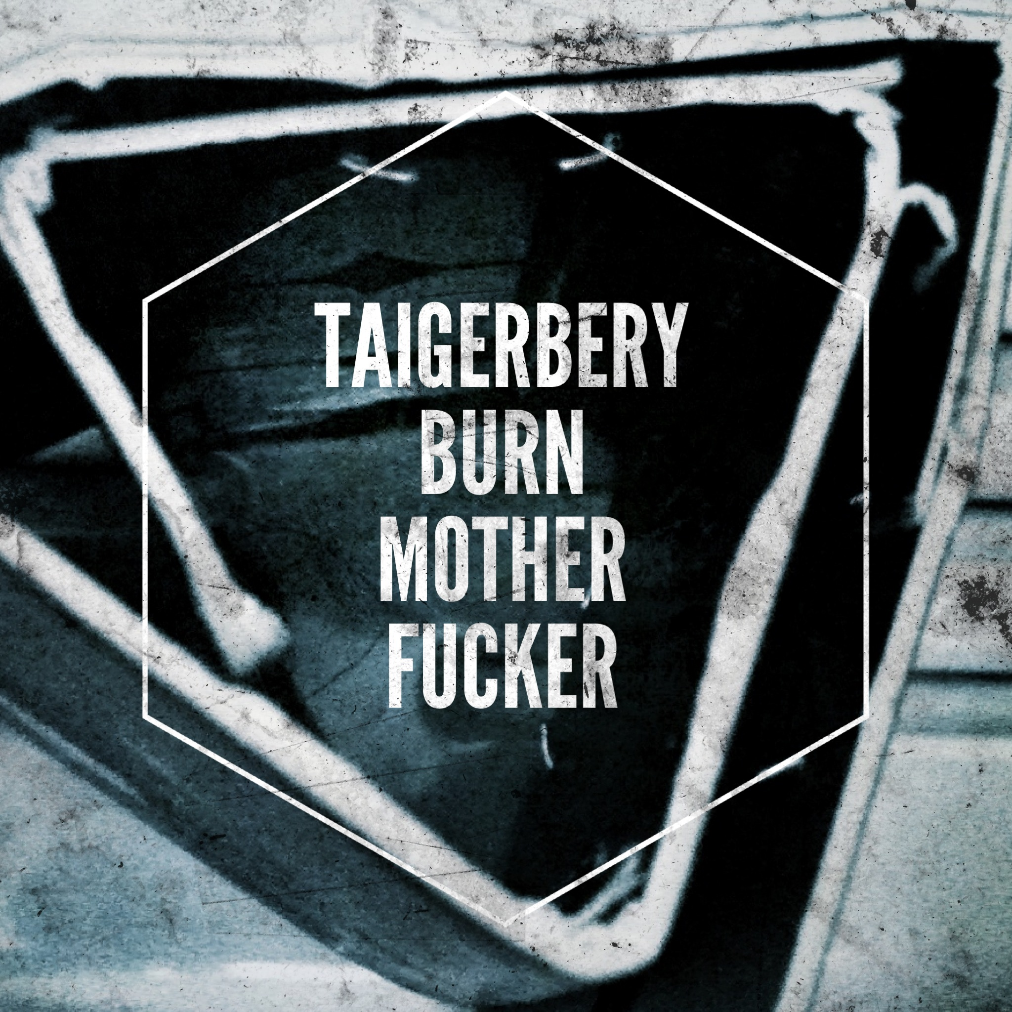 Taigerbery%20Burn%20Motherfucker.jpg